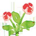 fiore 1 | Linea Carla Amaducci